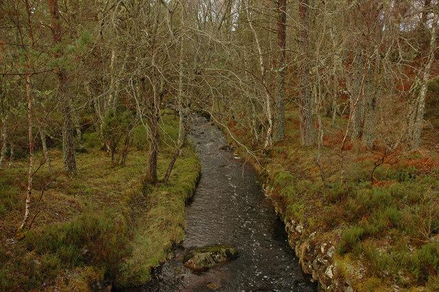 Stream near Dulsie Wood