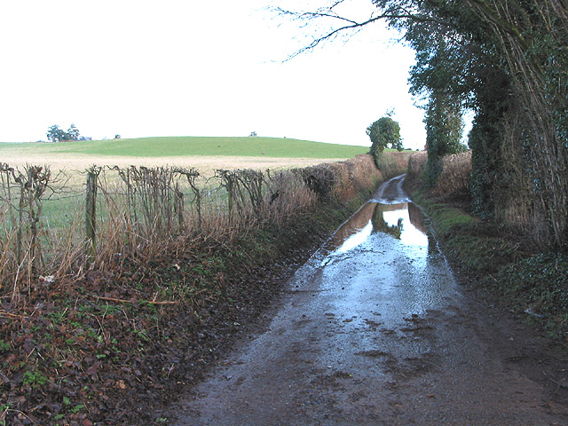 Single track road to Oxenhall from Gorsley
