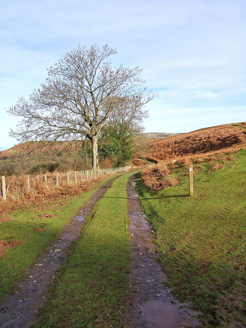 Bridleway on Clee Liberty Common