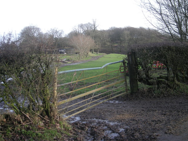 Farm track into Broomhill Wood
