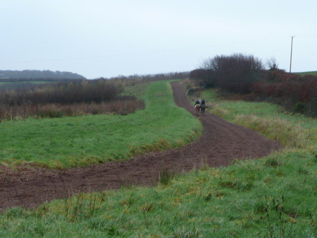 Gallops at Carrier's Lane End