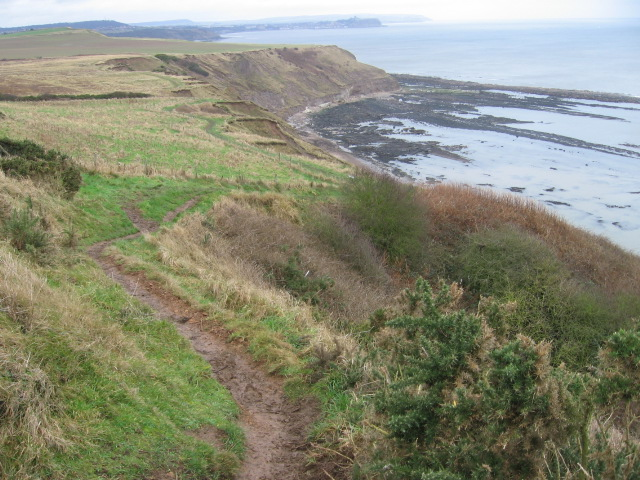 Cleveland Way above Gristhorpe Cliff