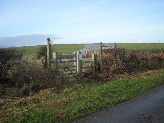 Footpath to Rowans Wood