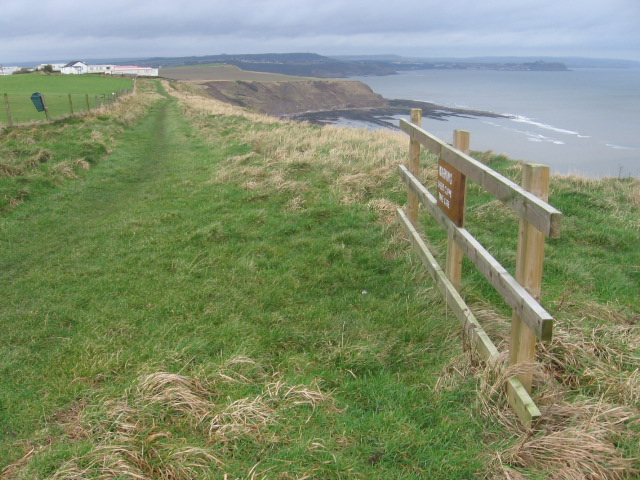 Cleveland Way by Gristhorpe Cliff