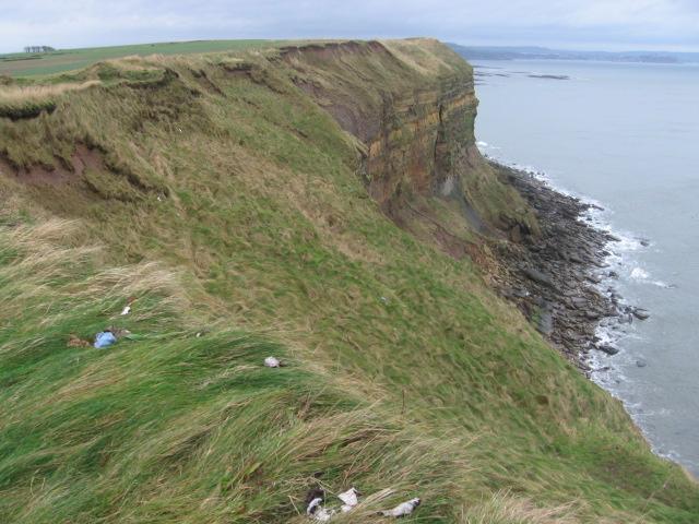 Cliff near Under Nine Rocks