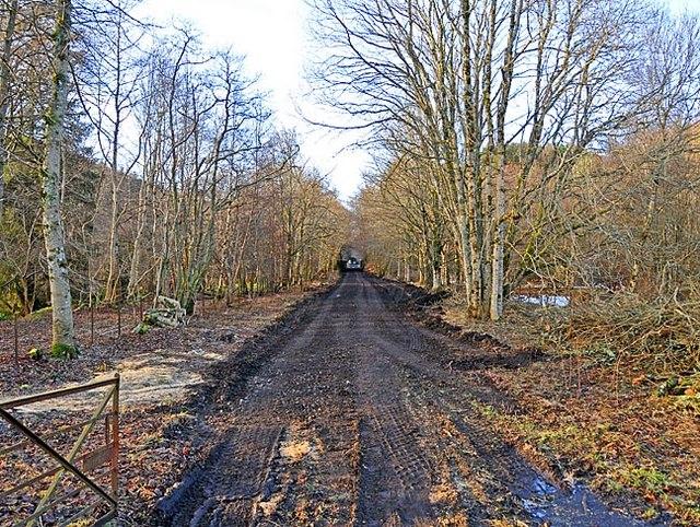 Dismantled Railway Line west of Dalhonzie