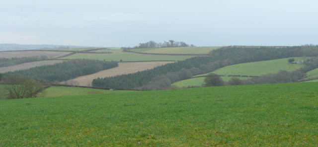 Woodland and farmland south of Higher Hollam