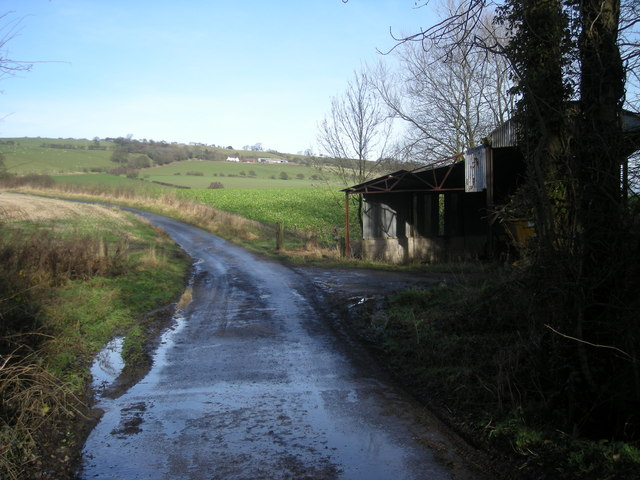 Lane and shed for a harvester