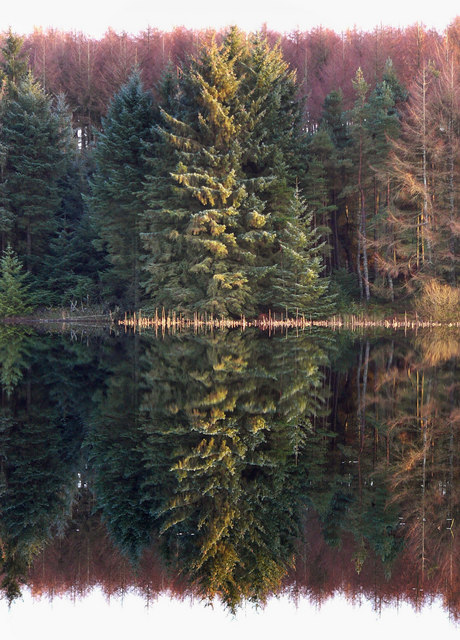 The Black Loch - reflections