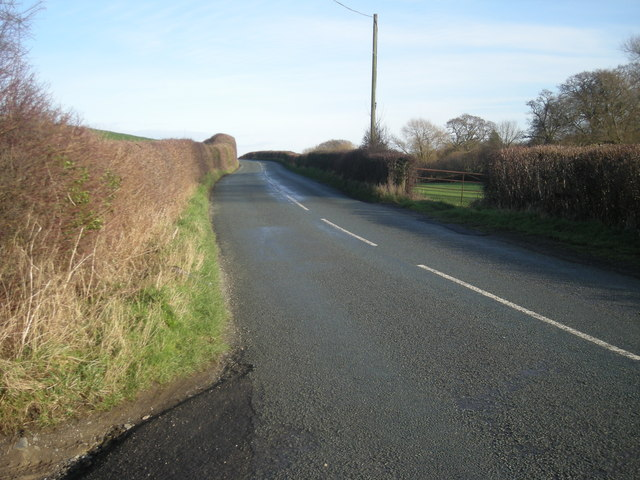 The road to Marton
