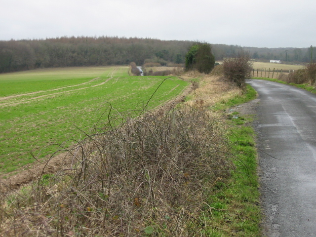 View along the Waldershare Road towards Eastling Wood