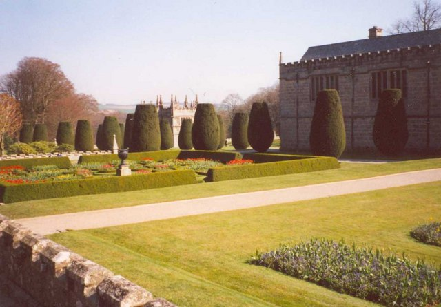 Clipped Irish yews,Lanhydrock House