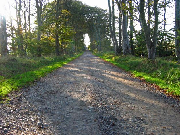 Track to Nether Anguston