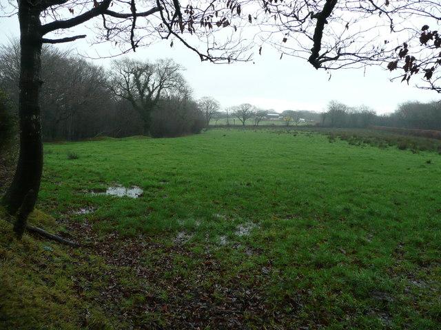 Pastures east of Danesmoor