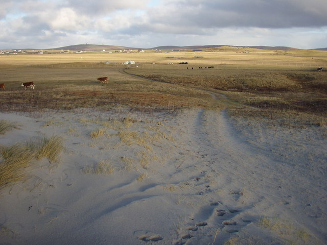 Dunes to farmland