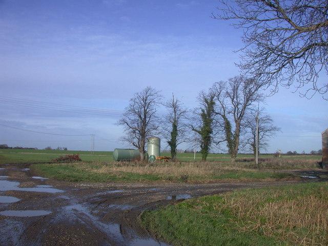 Trees and Tanks, Meadow Farm