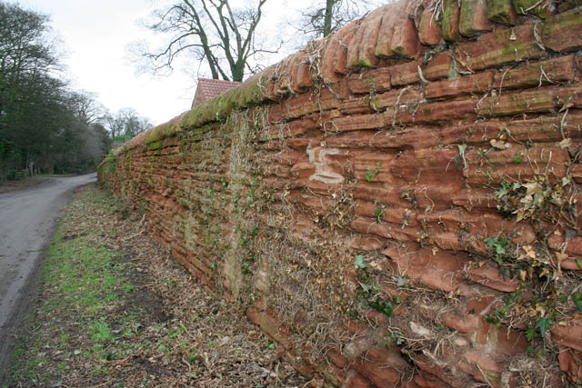 Wall on Main Street, Strelley
