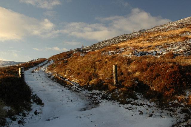 Track near Drynachan