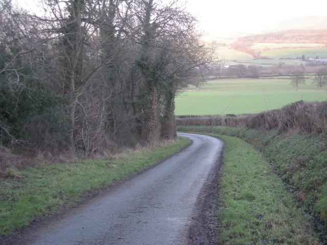 Lane near Plas Madoc