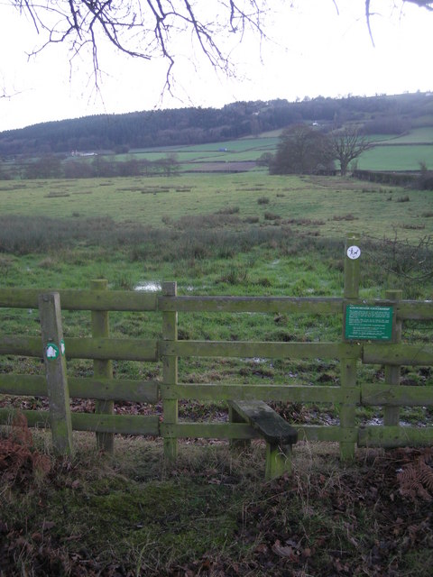 Stile and boggy field