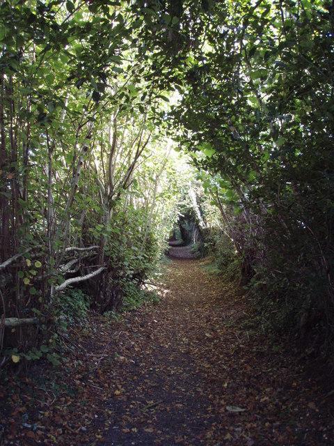 Hare Lane