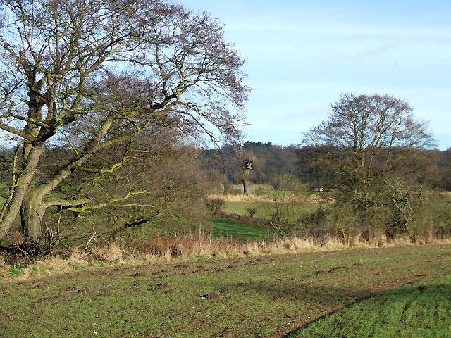 Farmland near Ashwood, Staffordshire