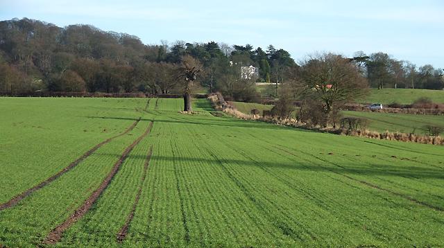 Fields near Ashwood, Staffordshire