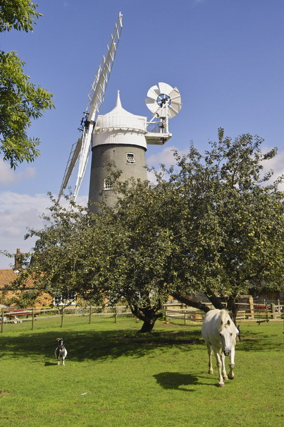 Great Bircham Windmill