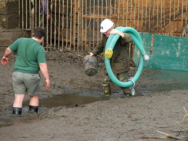 2007 : Glorious mud (Claverton Pumping Station)