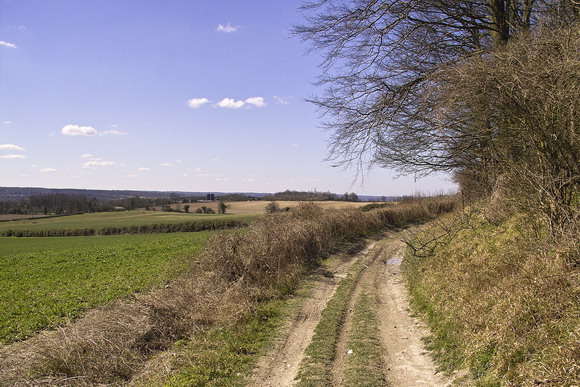 North Downs Way at Wrotham