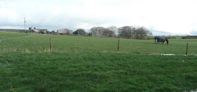 Pasture land at Bowden