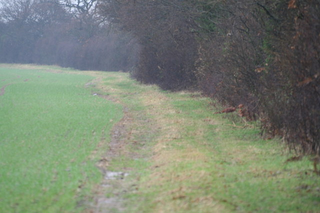 Farm track into arable land