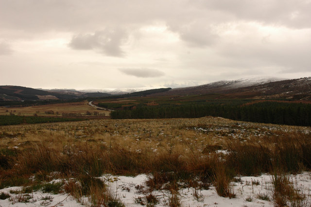 Forest clear-fell near the A9
