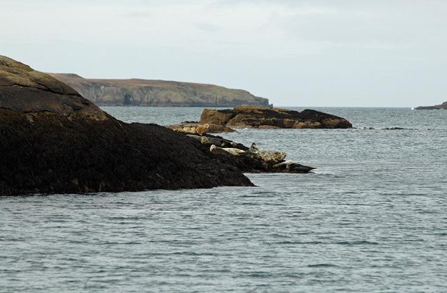 Eilean a' Chàr Summer Isles