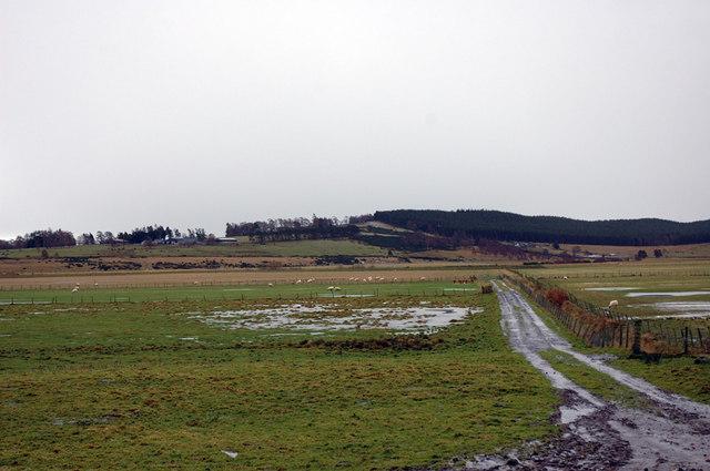 Farmland by the River Dulnain