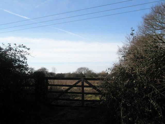 Looking across fields in Clay Lane