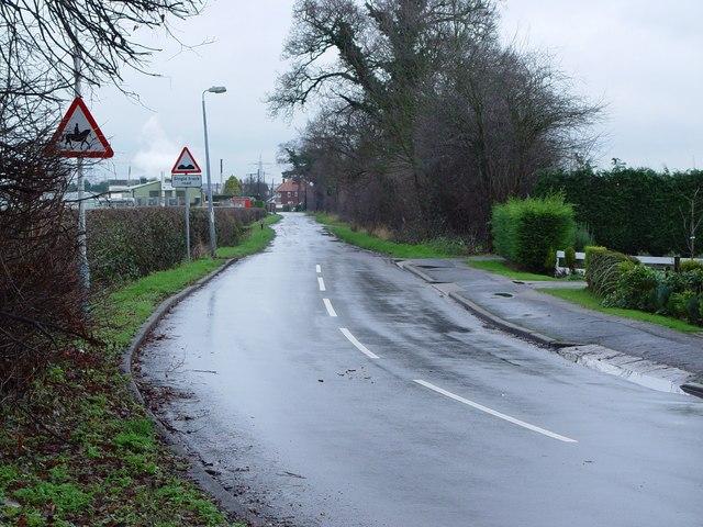 Park Lane, Cottingham