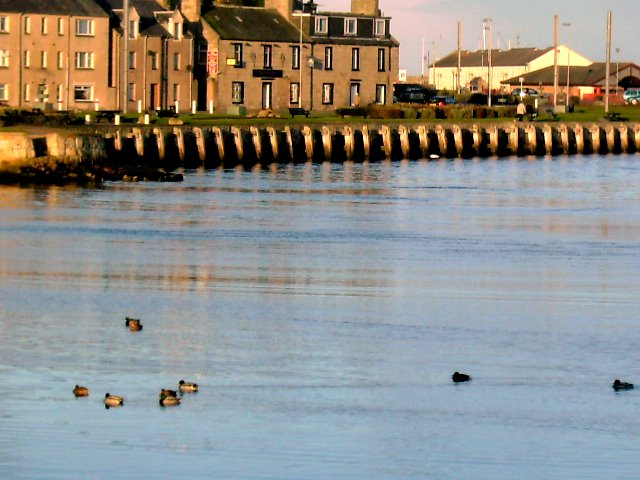 Lossiemouth in January