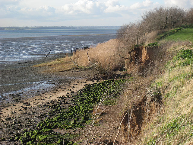 Shallow cliffs on north Stour shore