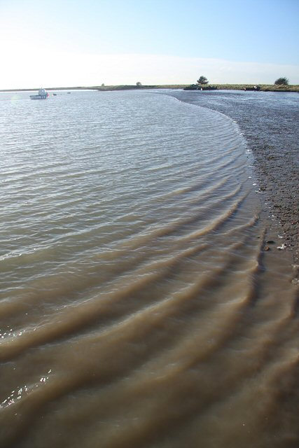 Ripples on the incoming tide