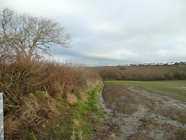 View east to Abbotsham