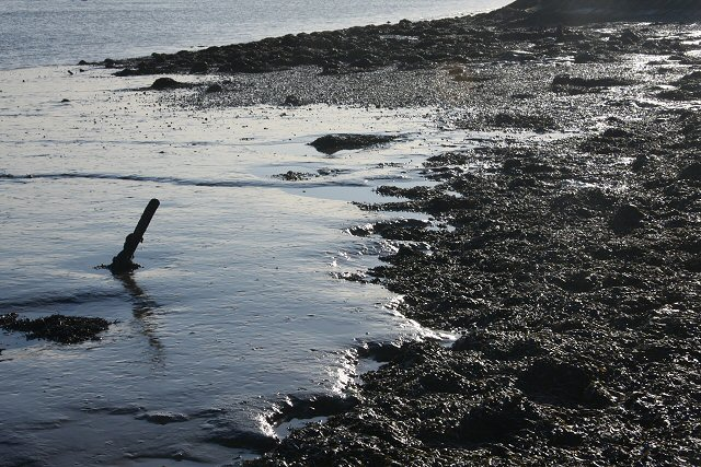 Muddy foreshore at Orford