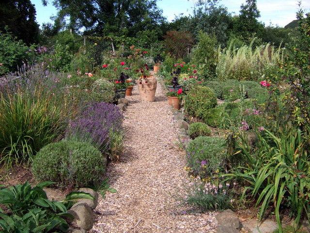 Herb garden at Dyffryn Fernant