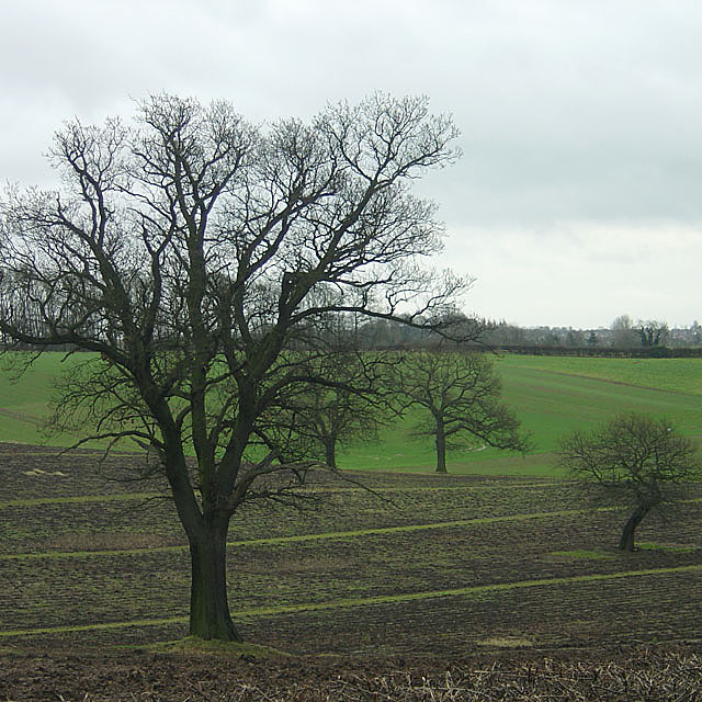 Countryside near Violet Hill