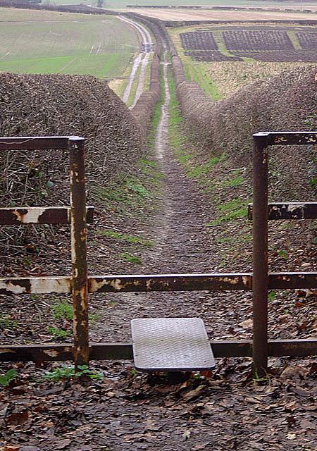 Footpath on Violet Hill