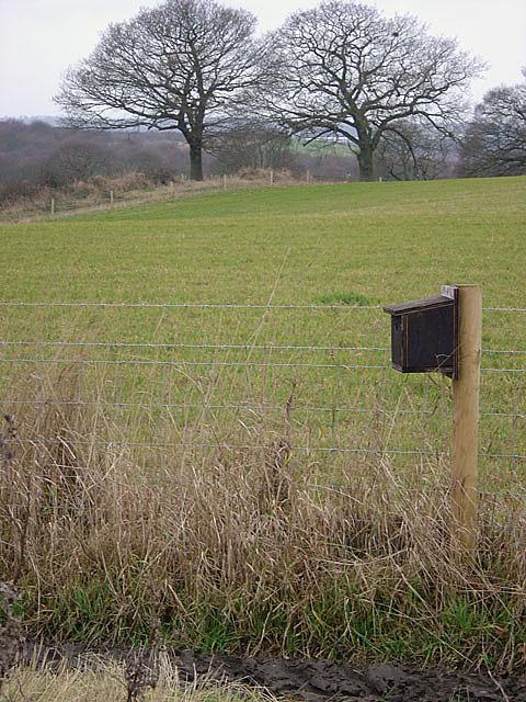 Farmland with birdbox