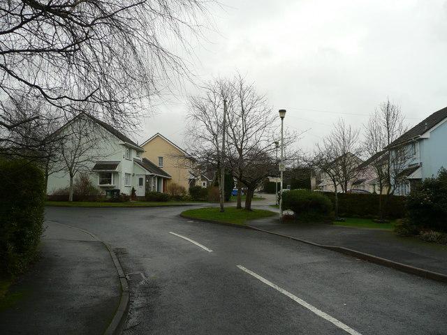 Oak Tree Drive