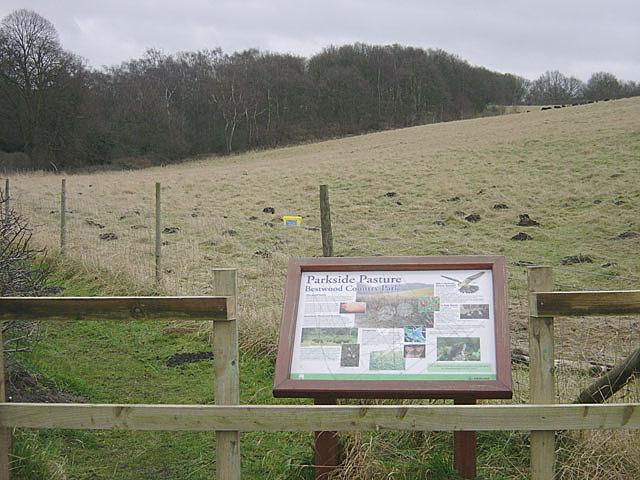 Bestwood Country Park - Parkside Pasture