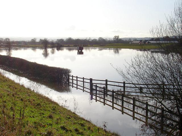 Flooded fields near Coed-y-dinas