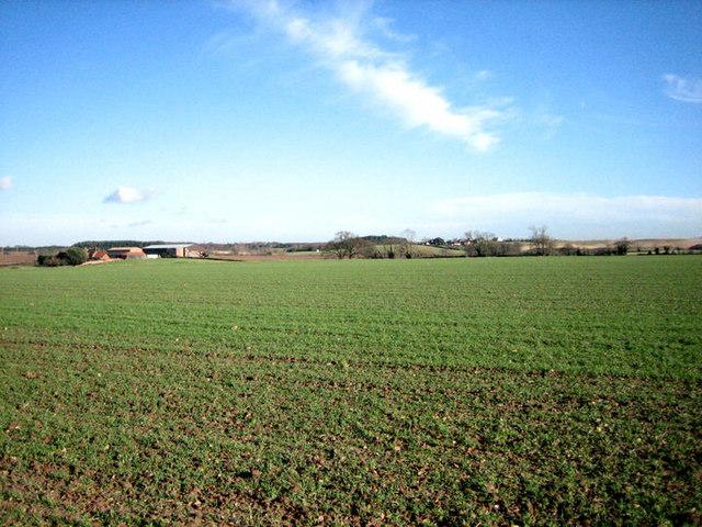 Undulating farmland